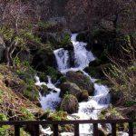 政泊川の流れ