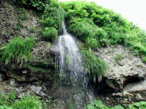 澤口の滝を正面から撮影