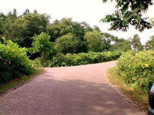 浄水場へ向かう道を途中で左折