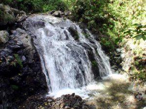 ブナ滝(黒松内町)