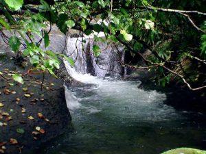 上泉川の滝状の流れ