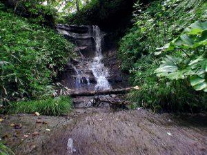 そうめんの滝に近づいて撮影
