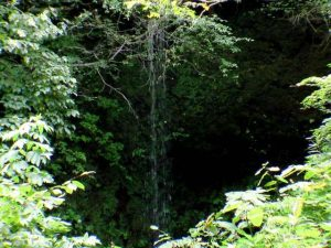 透見の滝直瀑部分 8月