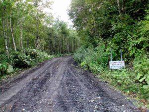 駐車場から平山登山道入り口に向かう道