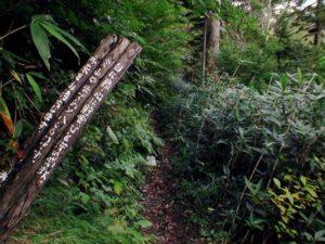 登山道入り口まで800mの看板