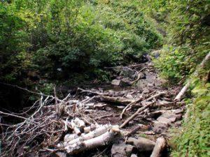 支湧別川の流れ