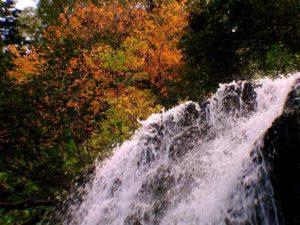 紅葉と冷涼の滝