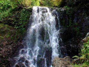 下から撮影した冷涼の滝