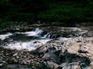 神居橋の下流から撮影した武利川の画像2