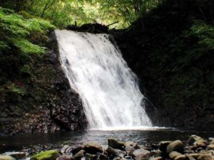 魚留の滝全景