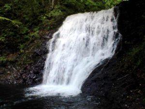 魚留の滝 別角度