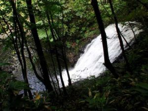 俯瞰の魚留の滝2