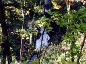 断崖下の大滝下流?