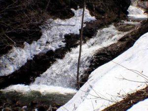 緩斜面の上の渓流