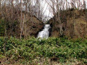 笹藪にさえぎられる東毛陽の滝