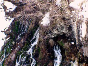 崖の途中から水がしみ出している