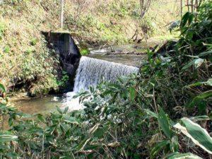 歌音の滝上流の堰堤