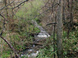 我路沢の滝上流