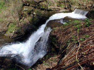 歌音の滝を横から撮影