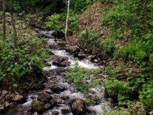 勝納川入渓地点