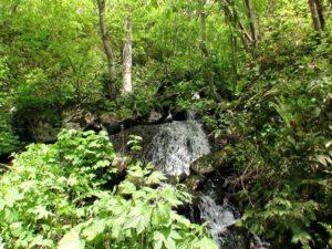 別沢の滝 その2