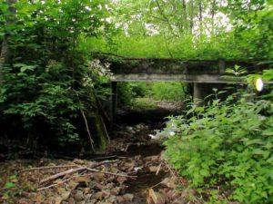 沢の下流に使われていない橋