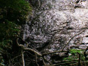 紅葉ノ滝をアップで撮影
