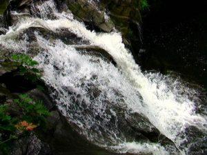 踏分道から見た一の滝