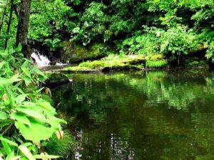 一の滝から見る二の滝