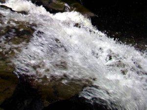 滝下から遊歩道に戻る途中のアップ