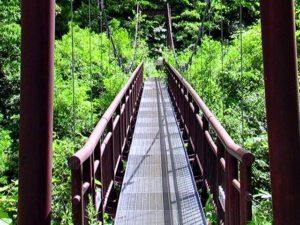 渓谷第一吊橋