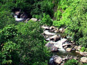ペンケペタン川の流れ2