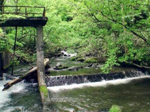 2007年6月の堰堤