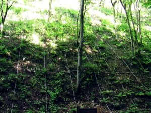 山肌にかかるネット2