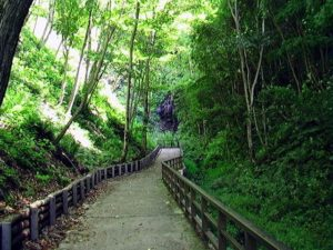 遊歩道突き当たりに白帆の滝