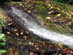 なめらかな曲線を描く滝の上部