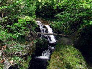 滝の下流は二股になっている