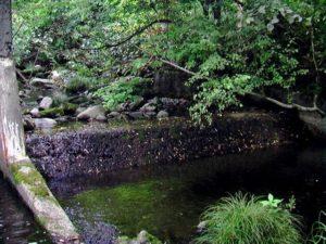2008年9月の堰堤
