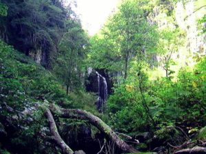 遠目に見る積丹大滝