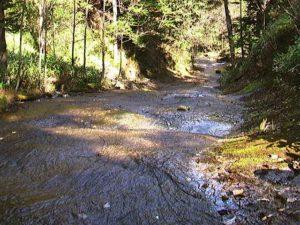 川幅いっぱいにナメた下流側