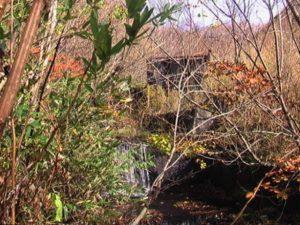 左股2つ目の堰堤