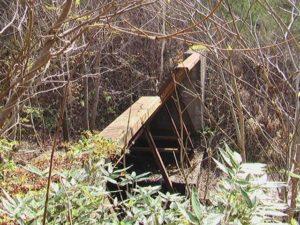 左股3つ目の堰堤横