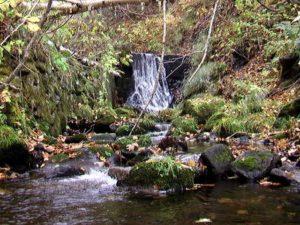 左股4つ目の堰堤