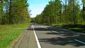 国道から林道に左折