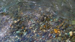 古平川の水