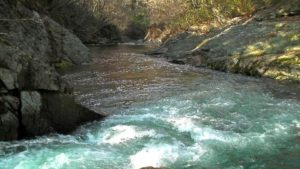 古平川本流の流れ