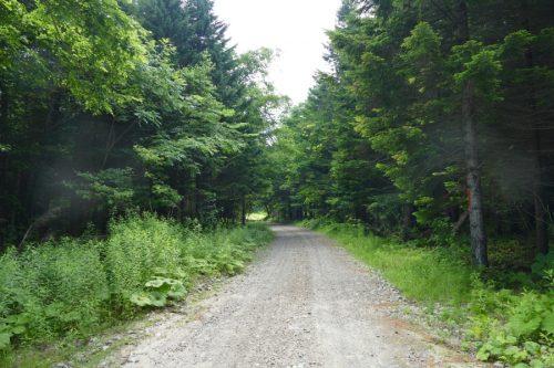 第一縦断林道