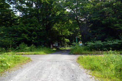 第一縦断林道入り口付近