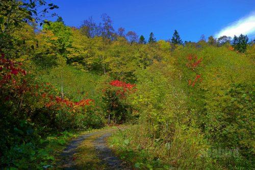 赤岩の滝までの景色1