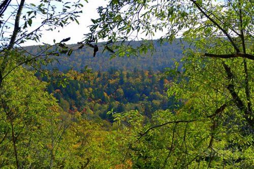 赤岩の滝までの景色その2